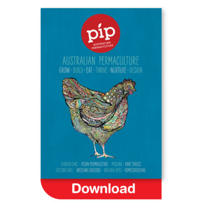 Pip Magazine Issue 7 Download