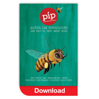Pip Magazine Issue 4 Download
