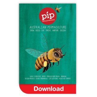 Pip Magazine Issue 4 Download