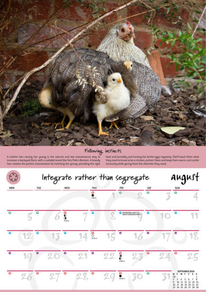 2019 Permaculture Calendar